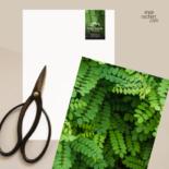 Logo und Briefpapier für Gartenarchitektin